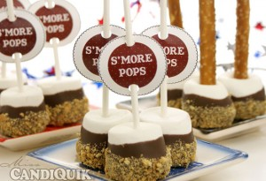 Easy S'more Pops - 2 ways by Miss CandiQuik