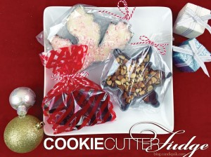 CookieCutterFudge-1b